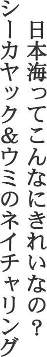 鼠ヶ関 シーカヤック&ウミのネイチャリング