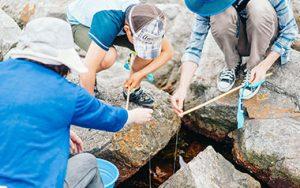 磯ガニ釣り&ウミのネイチャリング体験