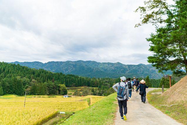 越沢棚田-体験の様子